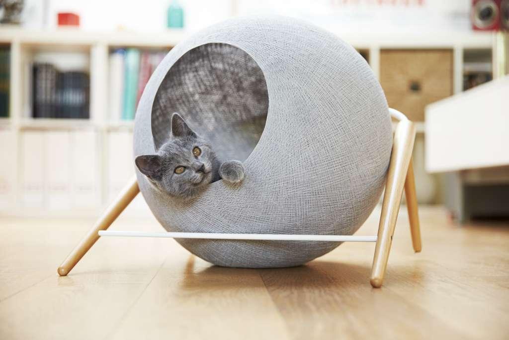 Oggetti di design per cani gatti e padroni 10 for Oggetti design regalo
