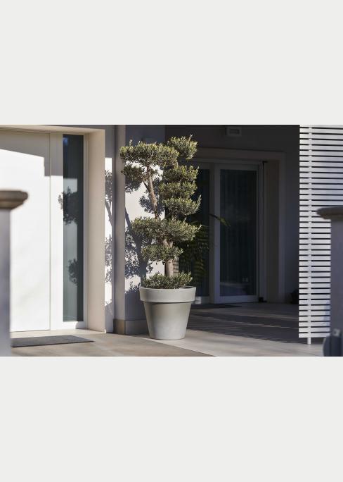 balcone arredato con pianta grande